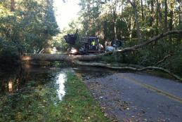 Worcester County Roads remove a fallen tree from Whiton Crossing Road